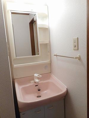 サンラフレ 02020号室の洗面所