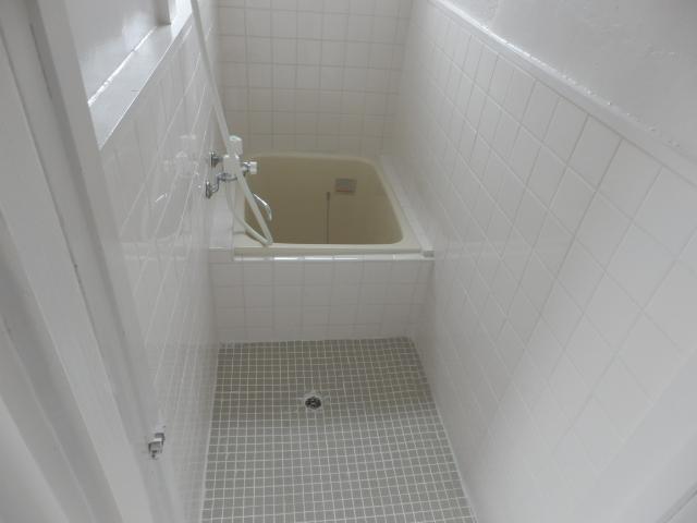 ブルースカイ石井B棟 111号室の風呂