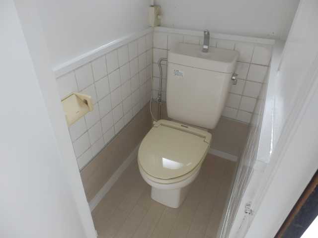 ブルースカイ石井B棟 111号室のトイレ