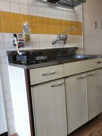 メゾン・ド・ロベリー 405号室のキッチン