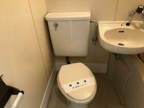 メゾン・ド・ロベリー 405号室のトイレ