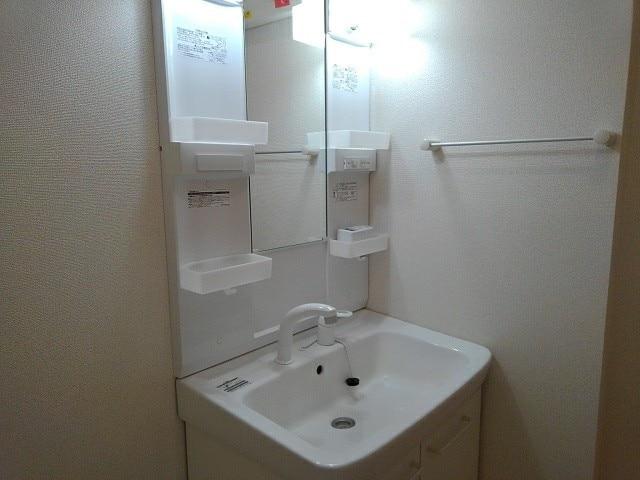 エヌエスアール 01010号室の洗面所