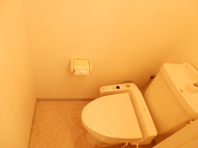 セジュール 201号室のトイレ