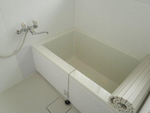 大森ハイツ 101号室の風呂