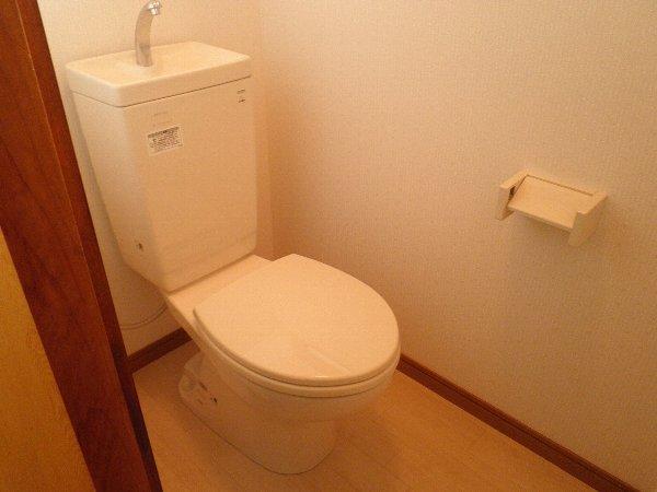 大森ハイツ 101号室のトイレ