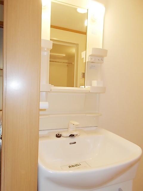 サンライズ 03020号室の洗面所