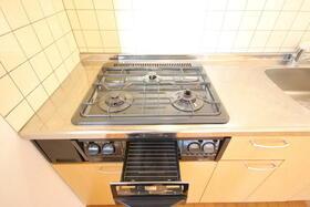 ブルーセントラルA棟 103号室のキッチン