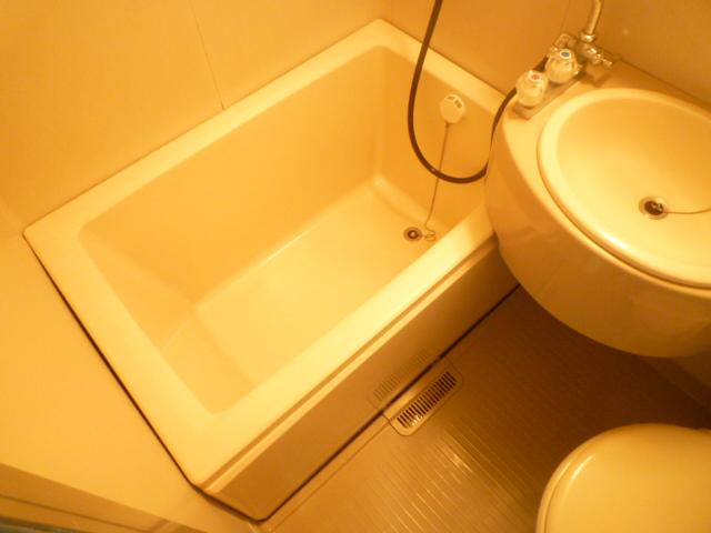 シティハイムレイソル 102号室の風呂