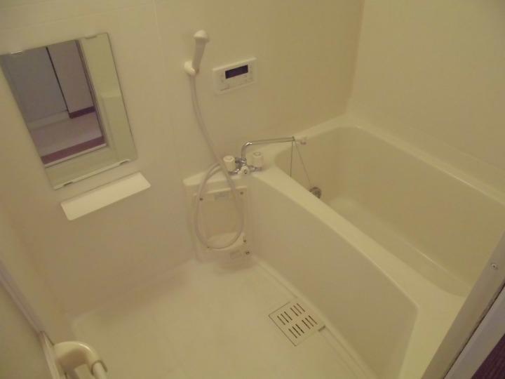 メゾンドエスパス 01020号室の風呂
