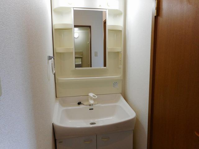 クレセールおおつ野A 01020号室の洗面所