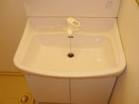 ジョワイユー・ファミーユ 02040号室の洗面所