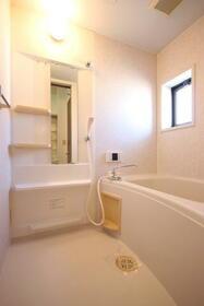 マーキュリーハイツE棟 201号室の風呂