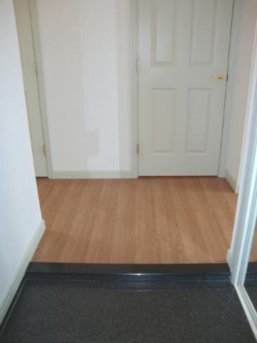 クリスタルハイツA 202号室の玄関