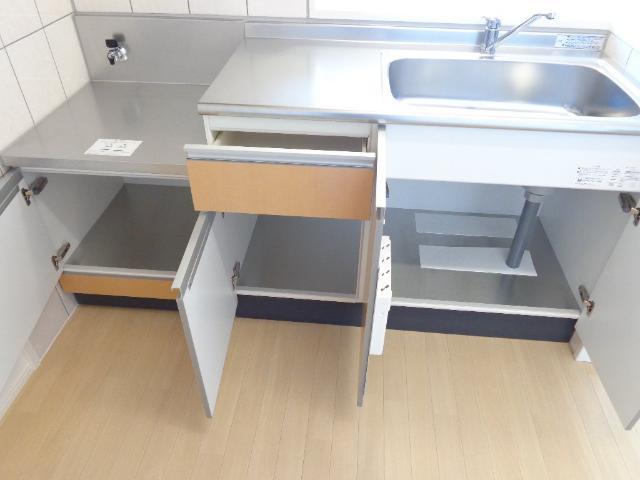 DOMANI 201号室のキッチン