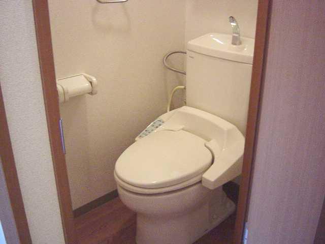ヴィンテージ 302号室のトイレ