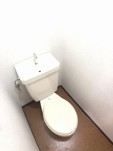 クリーンハイツさくら 01030号室のトイレ