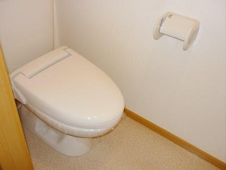 サン・ル-ム永国 02020号室のトイレ