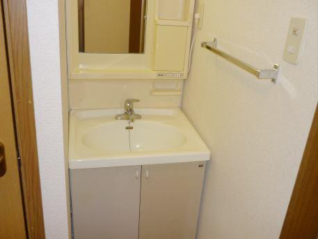 ベルフラワーF 01020号室の洗面所