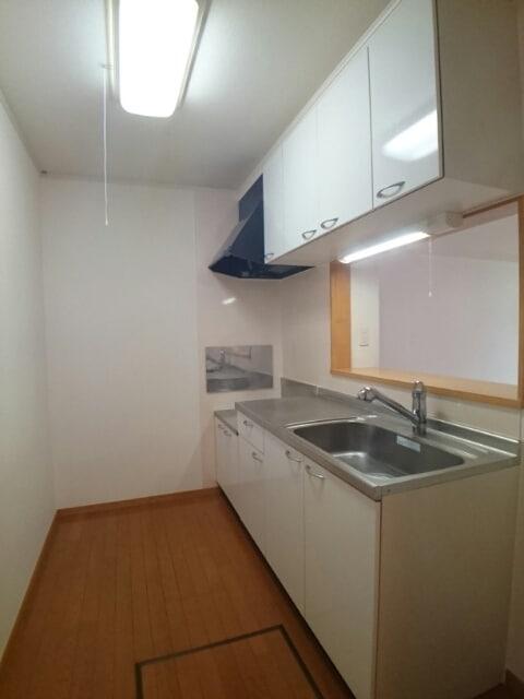 ラフィナート・パレ C 01020号室のキッチン