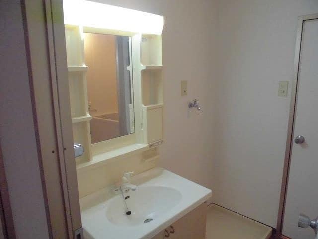 パエーゼ8 02020号室の洗面所