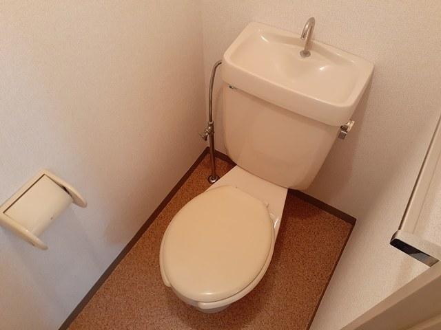 本谷ハイツ 01030号室のトイレ
