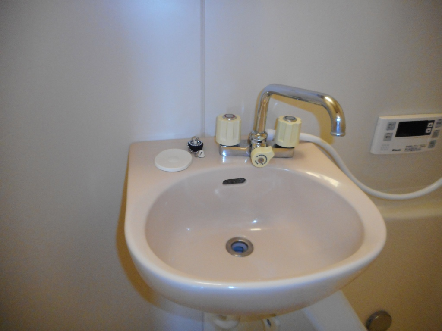 サンプレイス 02010号室の洗面所