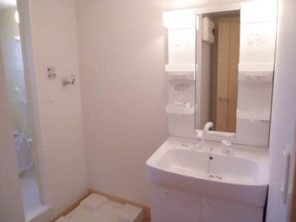 クレセールA 01010号室の洗面所
