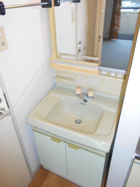 エクシード西谷 502号室の洗面所