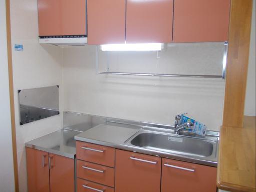 ソレアードホソヤD 02030号室のキッチン
