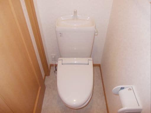 ソレアードホソヤD 02030号室のトイレ