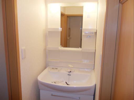 ソレアードホソヤD 02030号室の洗面所