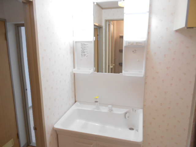 メゾン・エスポアール 302号室の洗面所