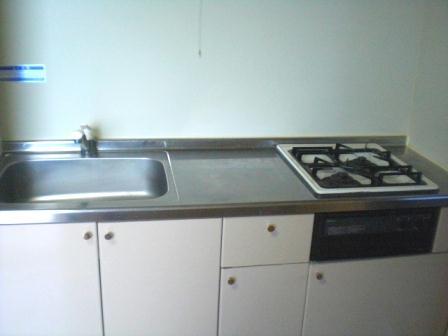 レオパレスラ・フォンティーヌ 102号室のキッチン