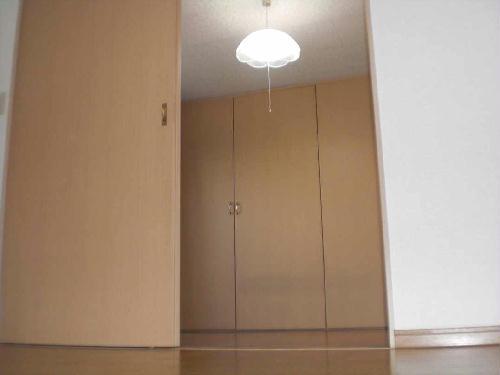 レオパレスメイル・サルートⅡ 201号室の居室