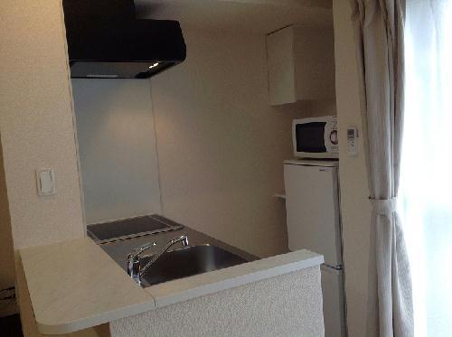 レオネクストトラッド湯河原 205号室のキッチン