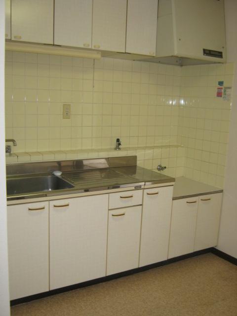 アローエスタ 302号室のキッチン