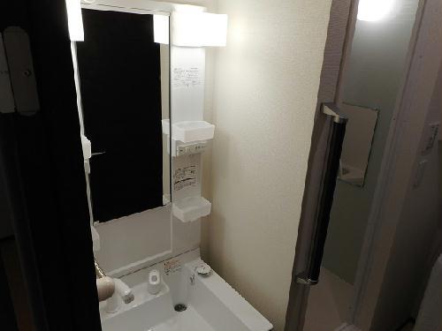 クレイノ未来 203号室の洗面所