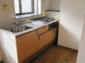 加藤ハイツ 201号室のキッチン