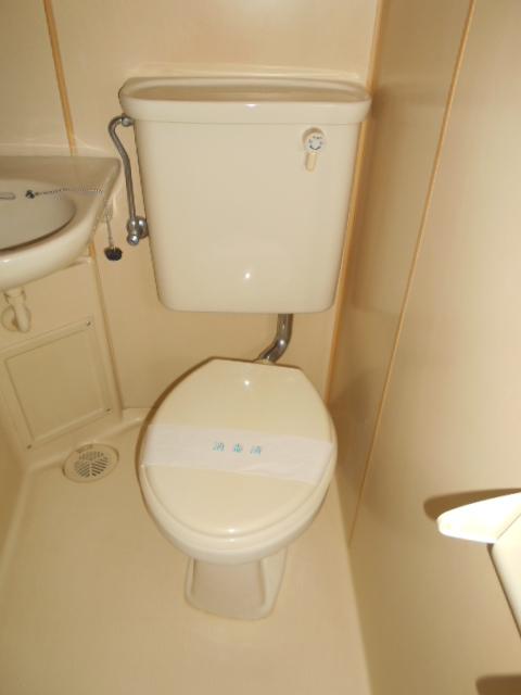 ロイヤルハイツ杉山 205号室のトイレ