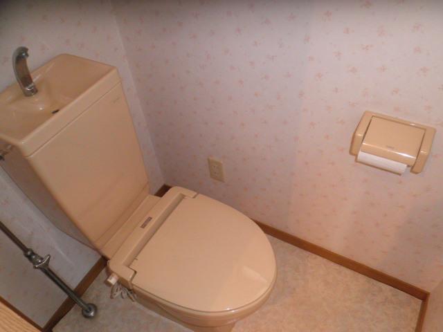 ハイツクリフサイド 202号室のトイレ