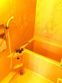 朝日プラザ越谷第Ⅱ 503号室の風呂