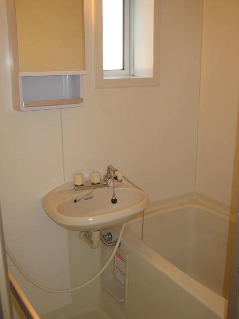 パームハウス湘南 201号室の風呂