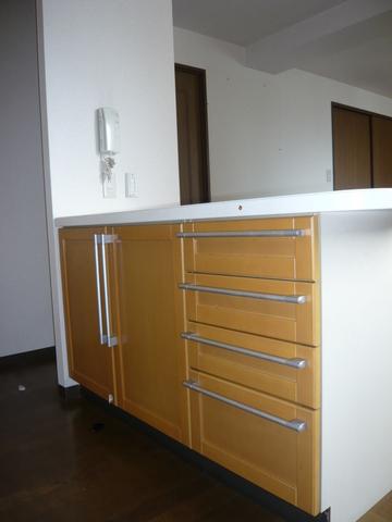 ミラベル関谷 1001号室のキッチン