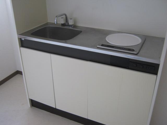 ワナー桜木 207号室のキッチン