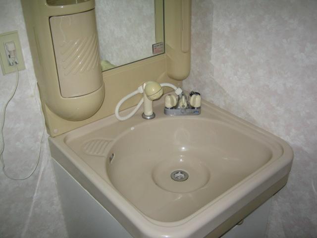 ラヴィータフォルトナ 101号室の洗面所