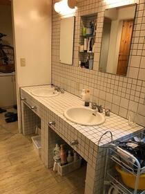 フラットエヌ D号室の洗面所