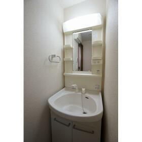 リヴェール睦 白山 0202号室の洗面所