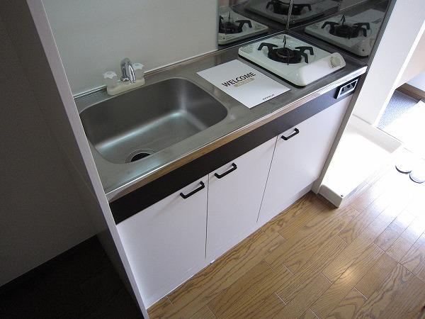 J・フローレ 202号室のキッチン