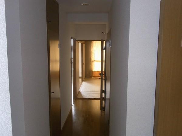ロイヤルガーデン髙杉 204号室の玄関