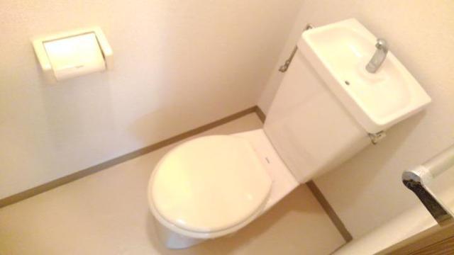 リバーサイド中川B 01020号室のトイレ